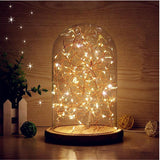 LED String Glass Dome Night Light