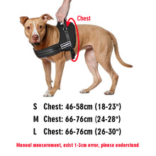 Load image into Gallery viewer, Adjustable Dog Harness