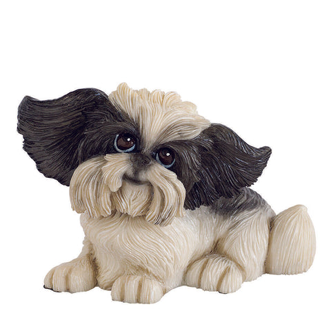 Arora Designs - LITTLE PAWS - OREO SHIH TZU