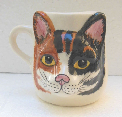 Babbacombe Pottery Drinking Mug with Calico Cat Face