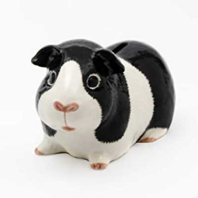 Quail Ceramics: Money Box: Guinea Pig. Black and White