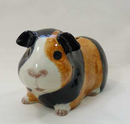 Quail Ceramics - Guinea Pig Money Box - Multi-coloured