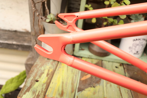 WETHEPEOPLE -Wethepeople Paradox Frame -FRAMES -Anchor BMX