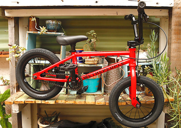 WETHEPEOPLE -WeThePeople Riot 14 inch 2021 Red -Complete Bikes -Anchor BMX