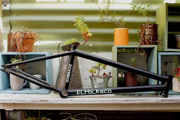 FIT BIKE CO BEGIN FRAME