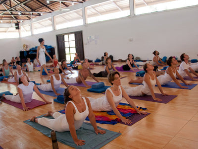 150hrs Level 1 - 4 Week Hatha Yoga Course in Thailand