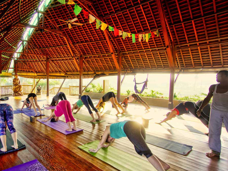 Path to Happiness - Bali Yoga Retreat