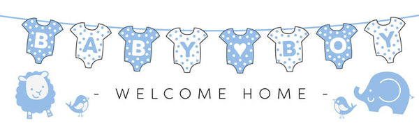 Printed baby boy banner 2