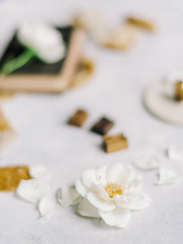 gold silk velvet ribbon - Partycrushstudio