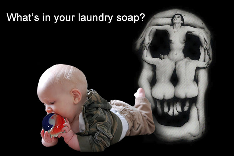 Soap Nuts - The Laundry Soap You Can Eat