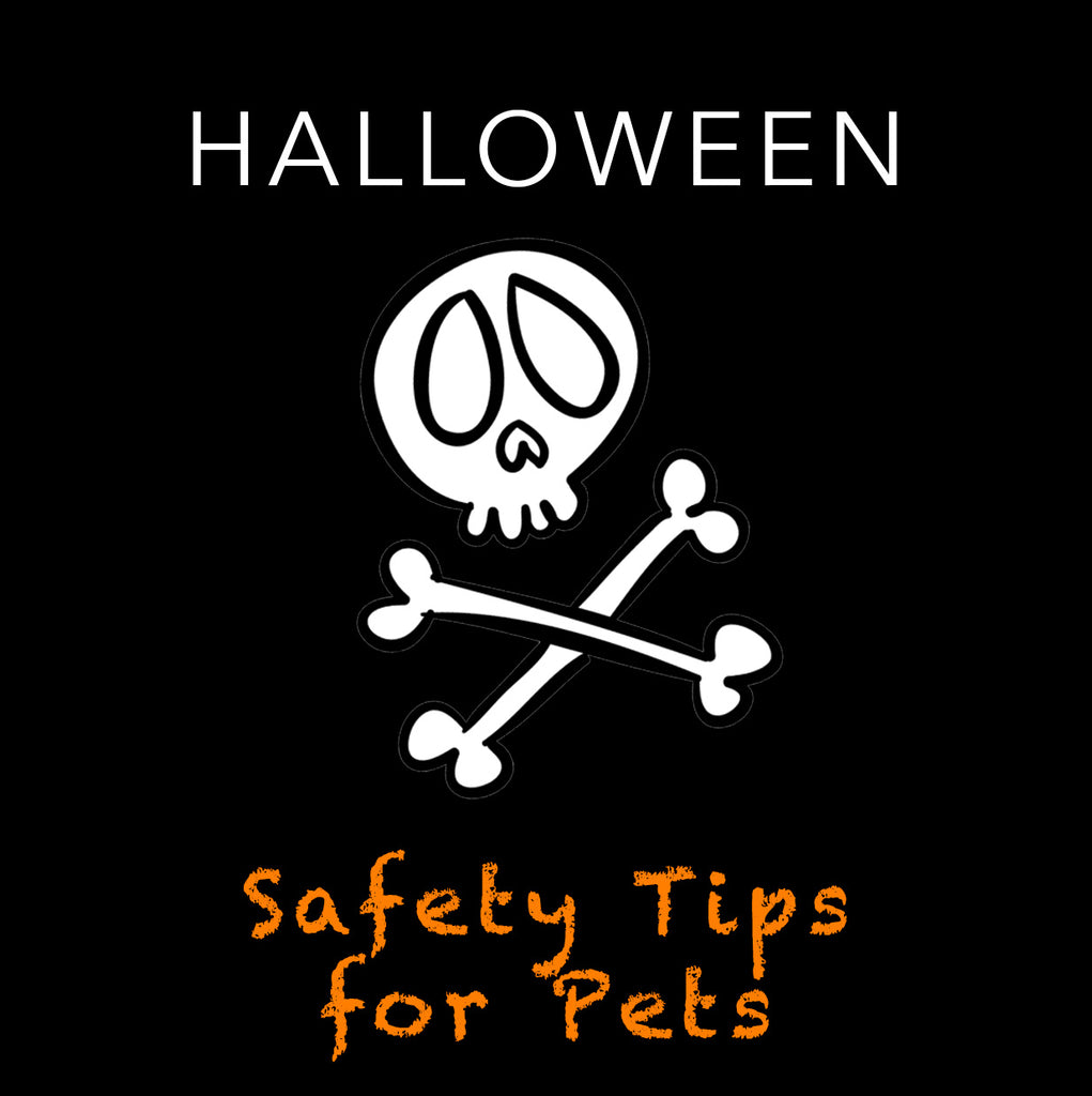 Trick or Treat! | Halloween Safety Tips