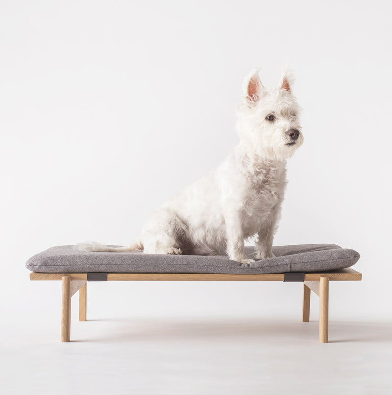 Walden Dog Bed in White Oak Dog Bed- Coco and Pistachio