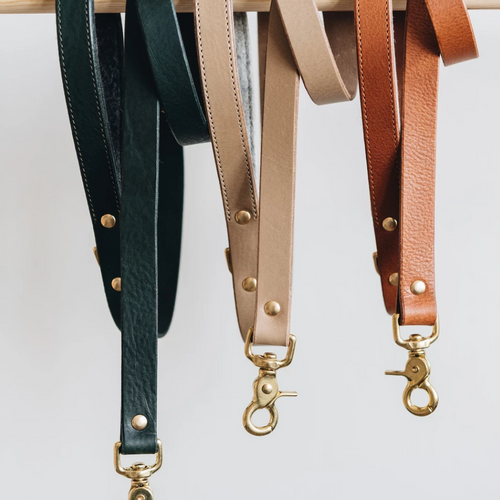 Leather Dog Leash Dog Leash- Coco and Pistachio