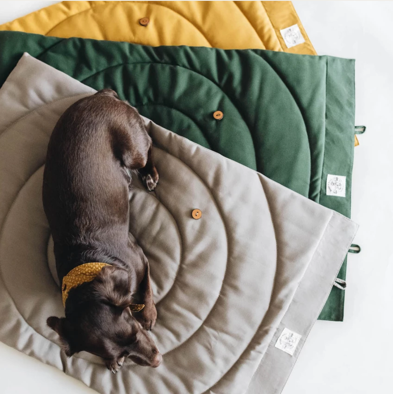 Dog Travel Blanket Dog Travel Bed- Coco and Pistachio