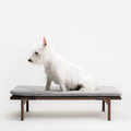 Walden Dog Bed in Walnut Dog Bed- Coco and Pistachio