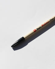 Teranishi Magic No. 300 Pen