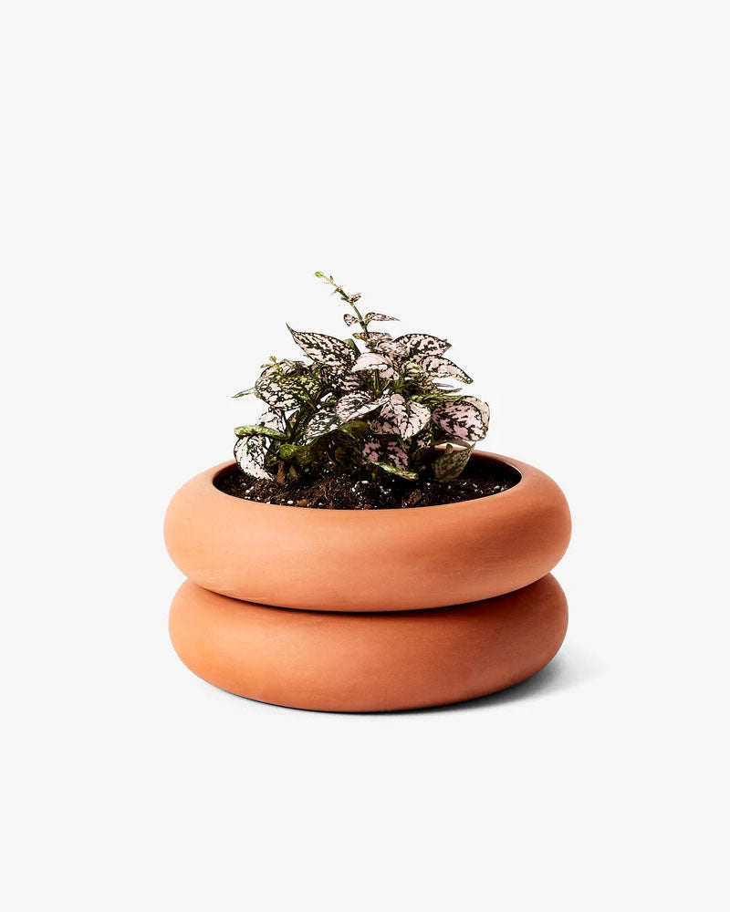 Stacking Planter