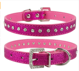 Multi Color Pet Rhinestone Collars