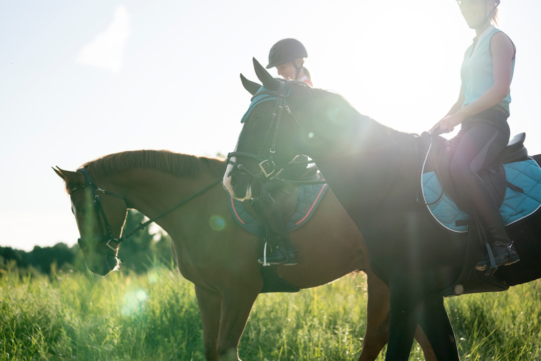 4 Benefits Gained Through Horse Riding