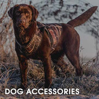 Hunting Dog Accessories