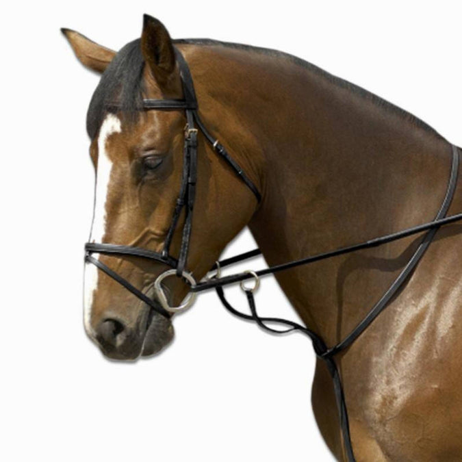 Horse Riding Running Martingale Schooling,black, photo 1 of 1