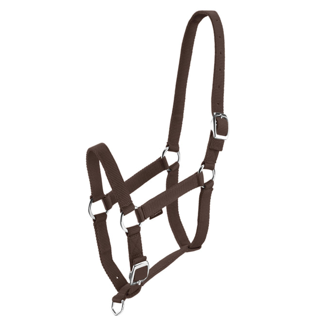 Horseback Riding Schooling Halter for Horse and Pony,coffee, photo 1 of 8