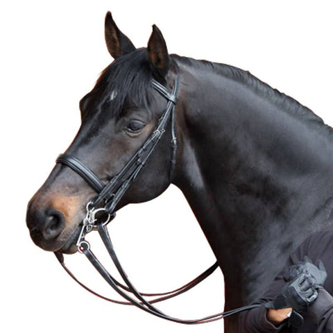 Horse Riding Bridle + Reins Set Beauvalais,black