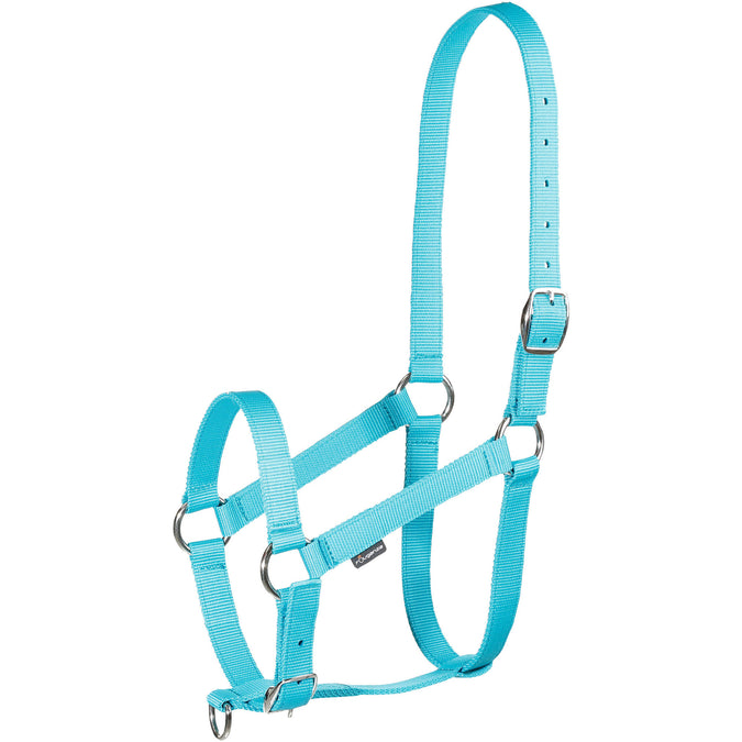 Horseback Riding Schooling Halter for Horse and Pony,teal green, photo 1 of 2