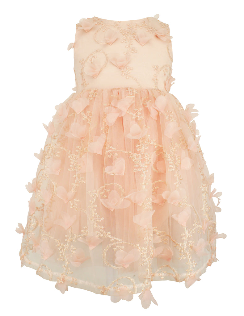 Popatu Little Girls Peach Butterfly Embroidered Tulle Dress - Popatu pageant and easter petti dress