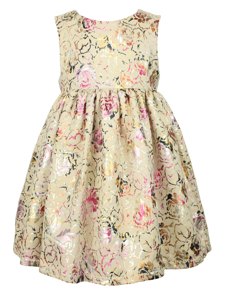Baby Girl's Elegant Flower Dress