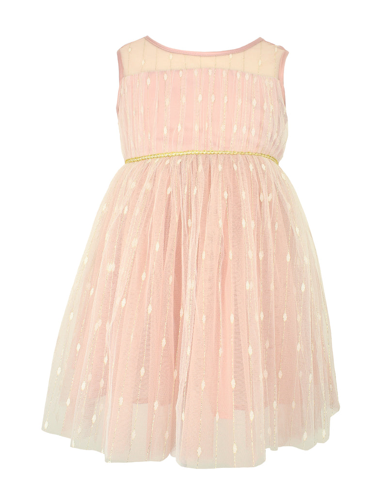 Little Girl's Dress with Shimmery Overlay
