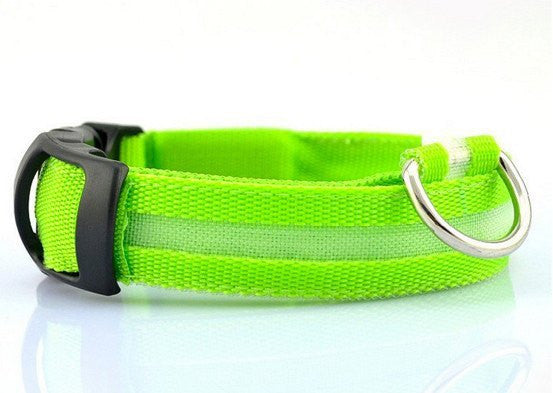 FREE Glow Safety Collar (Just pay S&H)