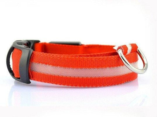 Glow Safety Pet Collars (5 Brilliant Colors)