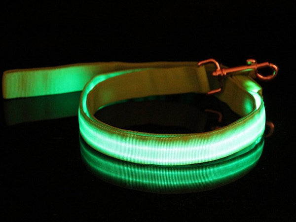 GLOW Safety Dog Leash (5 Colors)