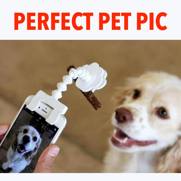 "The ""Perfect Pet Pic"" - Ultimate Phone Adaptor"