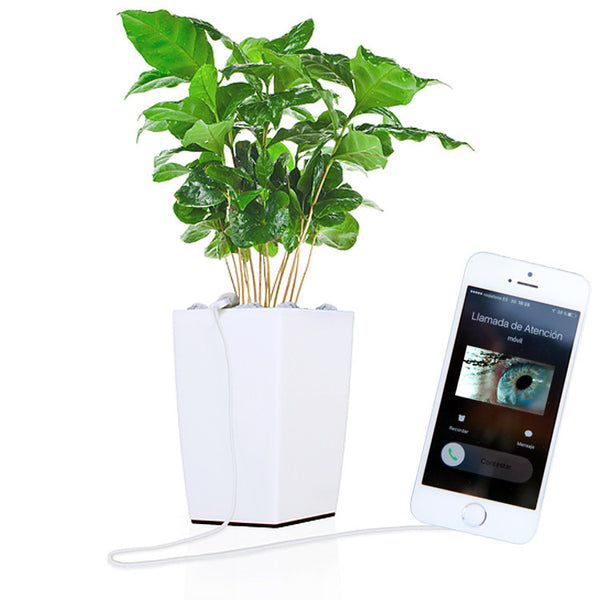 Bioo Lite : The plantpot that charges  your phone - Designclusive