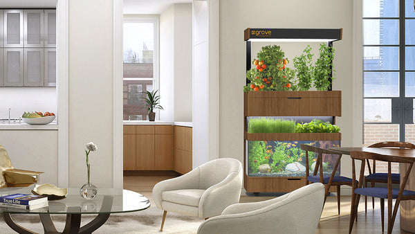 Grove Ecosystem - Grow Fresh Food In Your Home - Designclusive