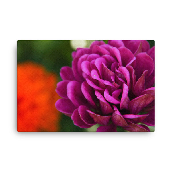 Flower photograph on canvas