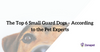 The Top 6 Small Guard Dogs – According to the Pet Experts