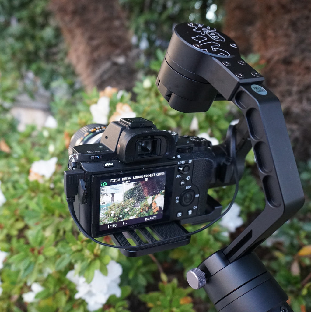 Filmmaking is a walk in the park with Zhiyun Crane camera stabilizer!
