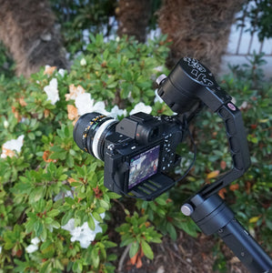 Zhiyun Crane in the garden! Get the most out of a camera stabilizer with CCI!