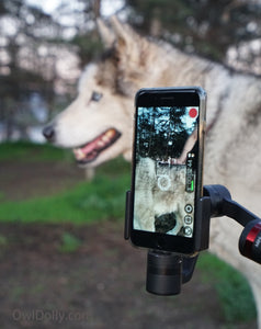 Live streaming from the woods with MOZA Mini-C Smartphone Stabilizer and iPhone 7 Plus!