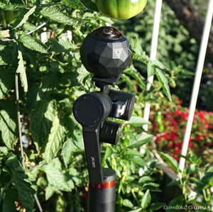 Exploring secret gardens in 360 degrees with Guru 360° Gimbal Stabilizer and 360Fly camera!
