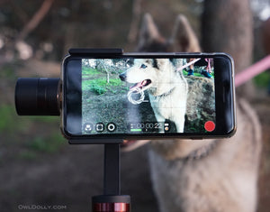 Top Camera Stabilizers Reviewed!