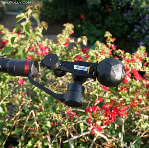 Everything is coming up roses with Guru 360 Gimbal Stabilizer and 360Fly camera!