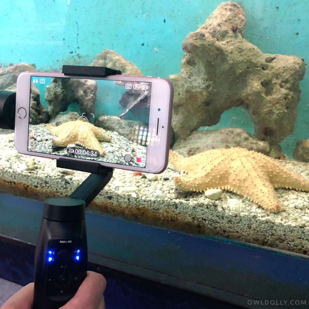 Take a Mini Tour of Isla Mujeres with MOZA Aircross, Mini Mi Smartphone Gimbal, and FiFish Underwater Rover!