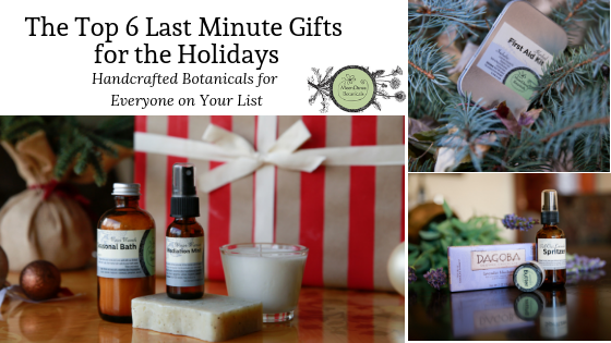 The Top 6 Last Minute Gifts for The Holidays