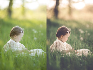 Vintage Lace Collection | Artistic Lightroom Presets
