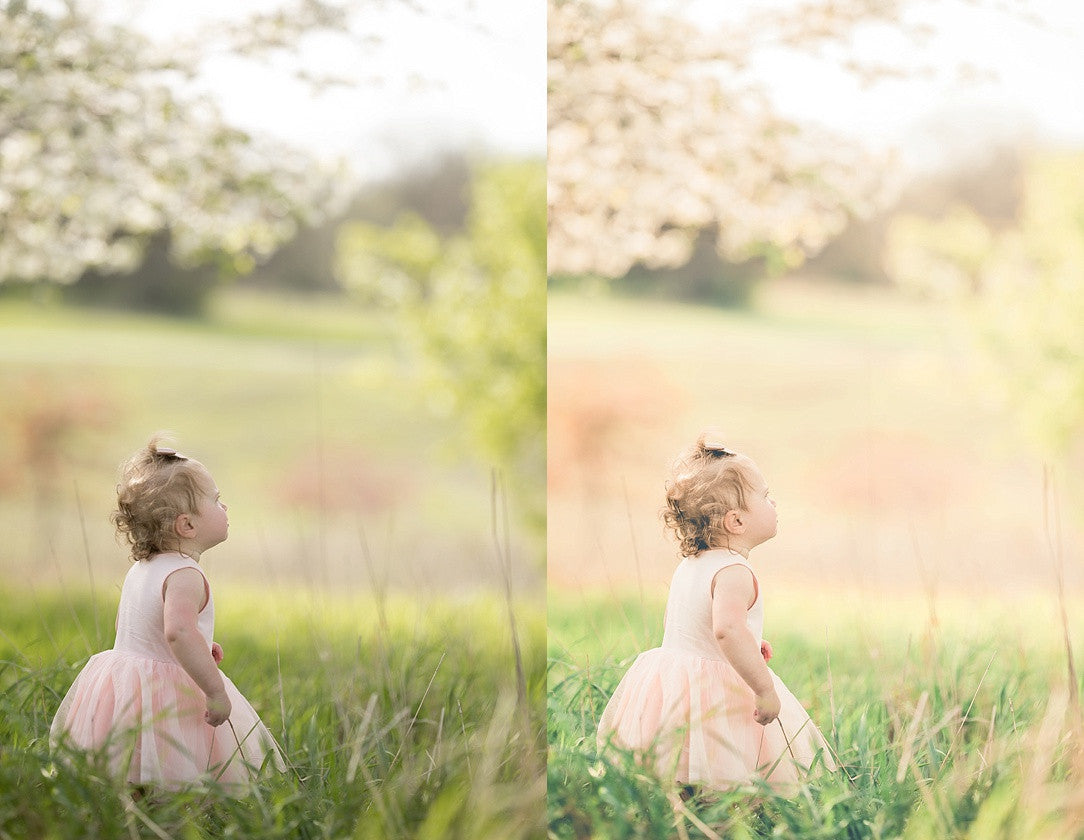 Pastels & Pinwheels Collection | Lightroom Presets
