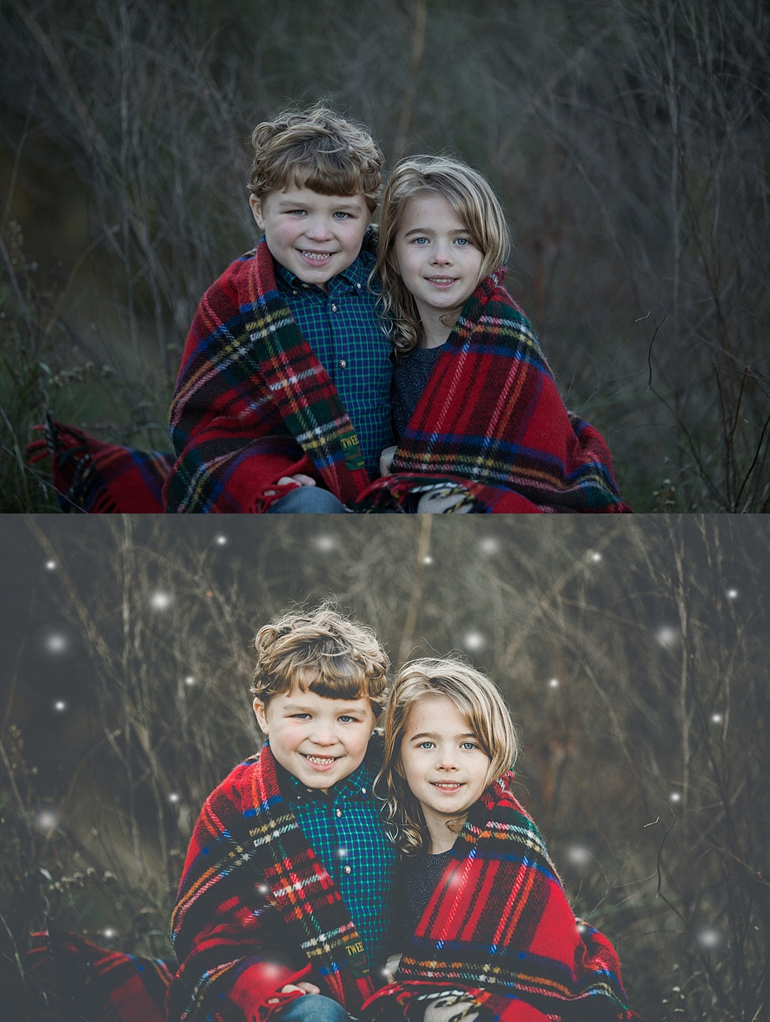 Wonderland Collection plus Snow Overlays | Lightroom Presets